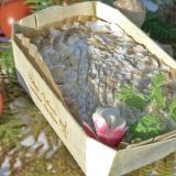 Rillettes de Tours na sua cesta de madeira